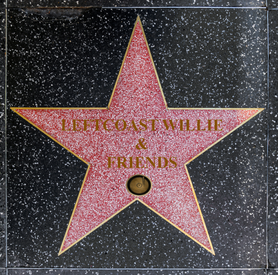 hollywood-walk-of-fame-star lcw2